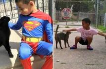 猫を世話する少年