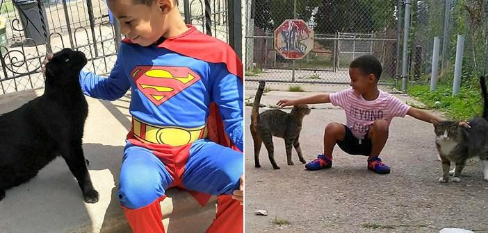 毎日、困っている野良猫達を助け続ける5歳の少年。間違いなく彼は、猫達のスーパーヒーローです! (11枚)