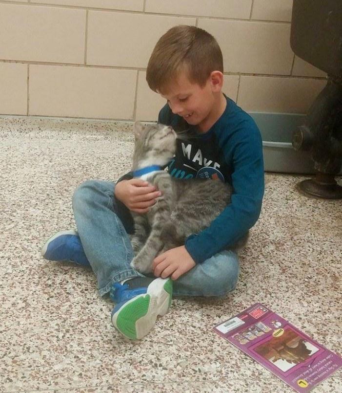 見つめ合う男の子と猫