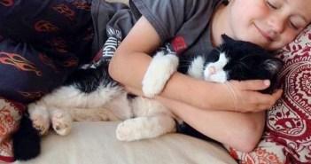 家族に迎えられた20歳の老猫。家に来た瞬間から、みんな幸せいっぱいに! (11枚)