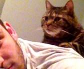病気で余命3年と宣告された子猫。それから13年が経っても、少年との友情は変わりませんでした (*´ェ`*)