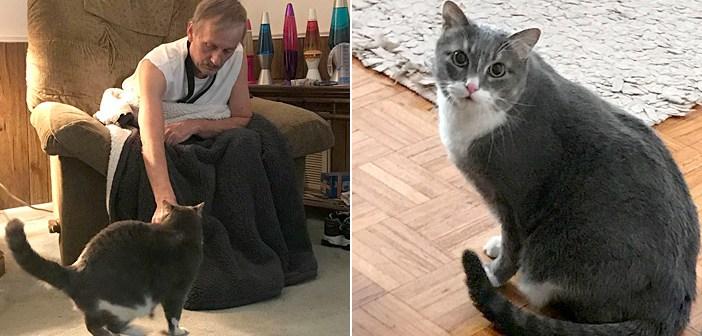 飼い主さんを救った猫