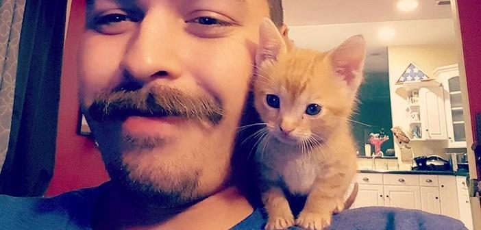 警察官に助けられた子猫