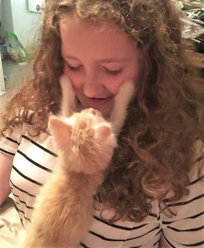 ハグする子猫