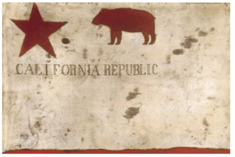 todd flag california state bear flag