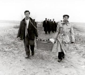 Hungarian refugees fleeing Soviet occupation, 1956
