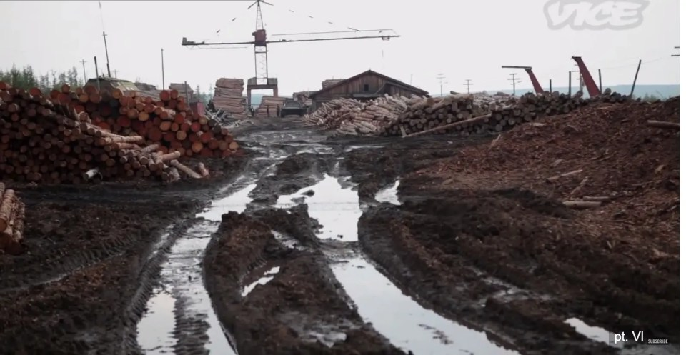 A work area at one of the North Korean labor camps in the Russian Far East (Image: video screen capture from Vice News reporting in 2011)