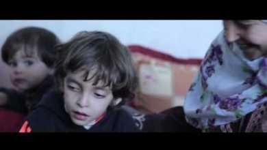 Photo of معا لشتاء دافئ .. حملة الوفاء الأوروبية تمد يد العون لأهالي قطاع غزة المحاصرين