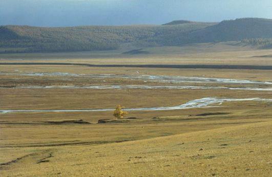 Mongolian Steppe - Wikipedia