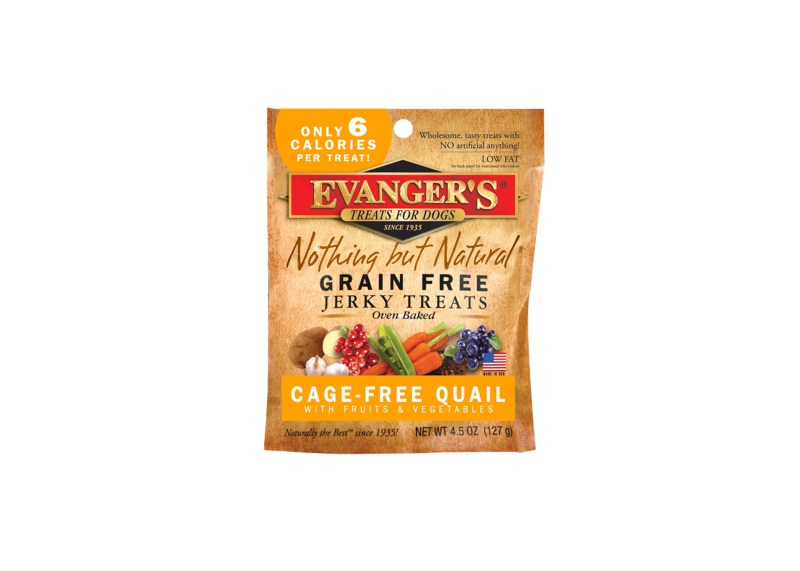 Large Of Evangers Dog Food Recall