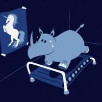A rhino's dream body