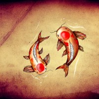 Wallpaper: Koi Fish