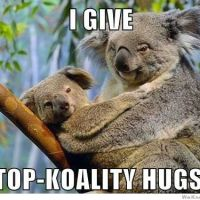 I give top Koality Hugs