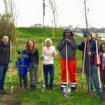 plantare-copaci-greenpact