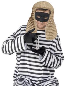 burglar copy