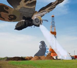 fracking moths