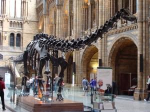 Diplodocus_(replica).001_-_London