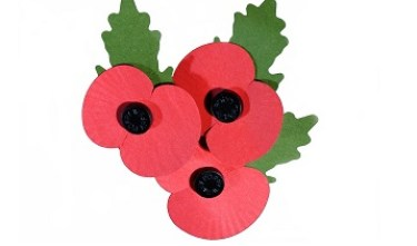 lapel_poppies_-_white_background_358x211