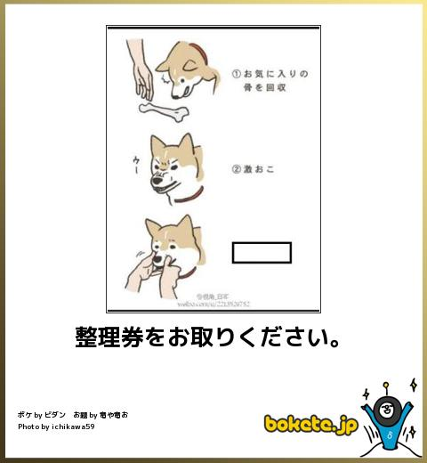 bokete, おもしろ, まとめ, ボケて, 爆笑, 画像321