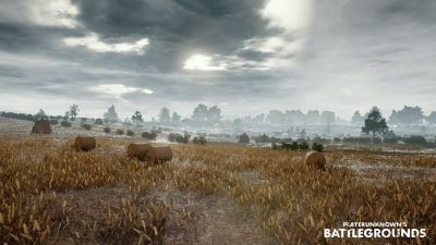 PlayerUnknown's Battlegrounds: PUBG Wallpapers and Photos 4K Full HD