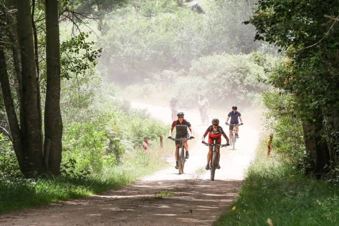 The scenic gravel roads of the Stanford MTB Tour will be supplemented with jeep and singletracks, to add to the rider experience in the 2018 Stanford MTB Classic. Photo by Oakpics.com.