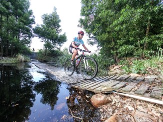 The floating bridge across the Waboomsrivier adds to the thrill of the Paardenberg singletracks. Photo by Oakpics.com.