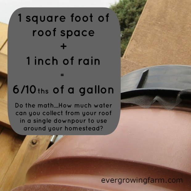 one square foot of roof space