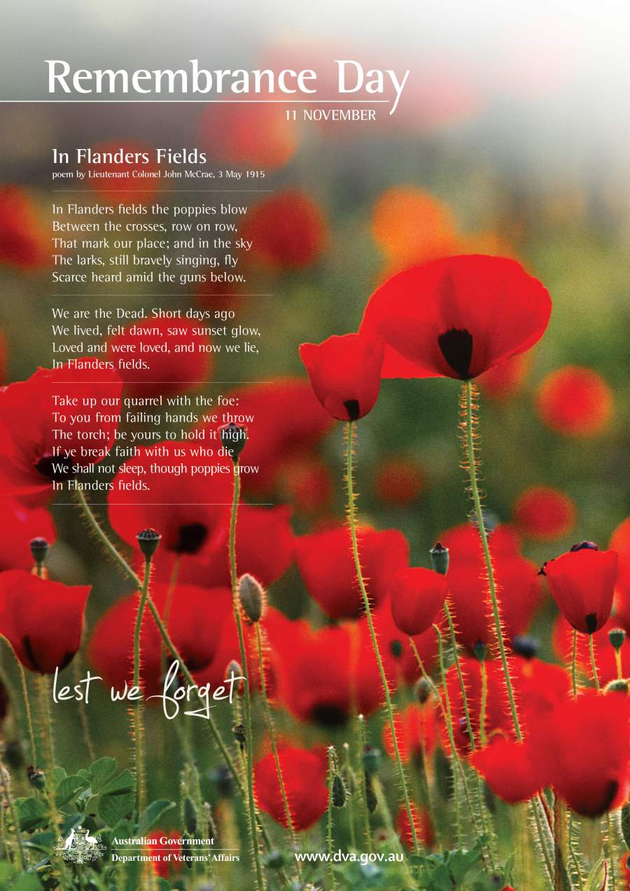 Flanders Fields Poem