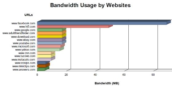 Company Bandwidth Usage