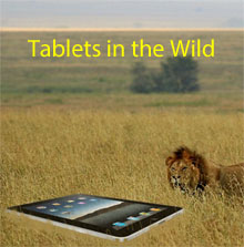 Tablet ecosystems defined.