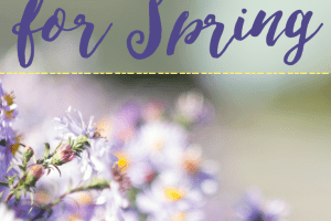 Feeling the itch to get outside now that it's Spring? Here are 10 cheap family activities for the spring that everyone can enjoy on a tight budget!