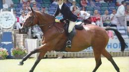 Vicky Mitson and Royal Gent aka Buster RIHS Championship-1