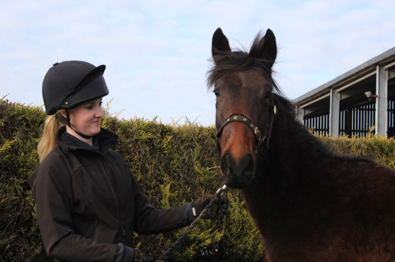 Alltech Support Rescue Pony: A Day in the Life of Tarzan
