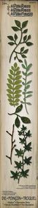 Tim Holtz Spring Greenery Decorative Strip