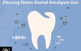 Lessons from Countries Phasing Down Dental Mercury Amalgam Filling Use