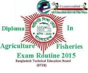bteb-diploma-exam-routine