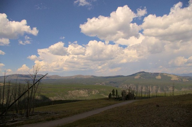 Chittenden Road viewpoint, Yellowstone National Park, Wyoming, August 18, 2014