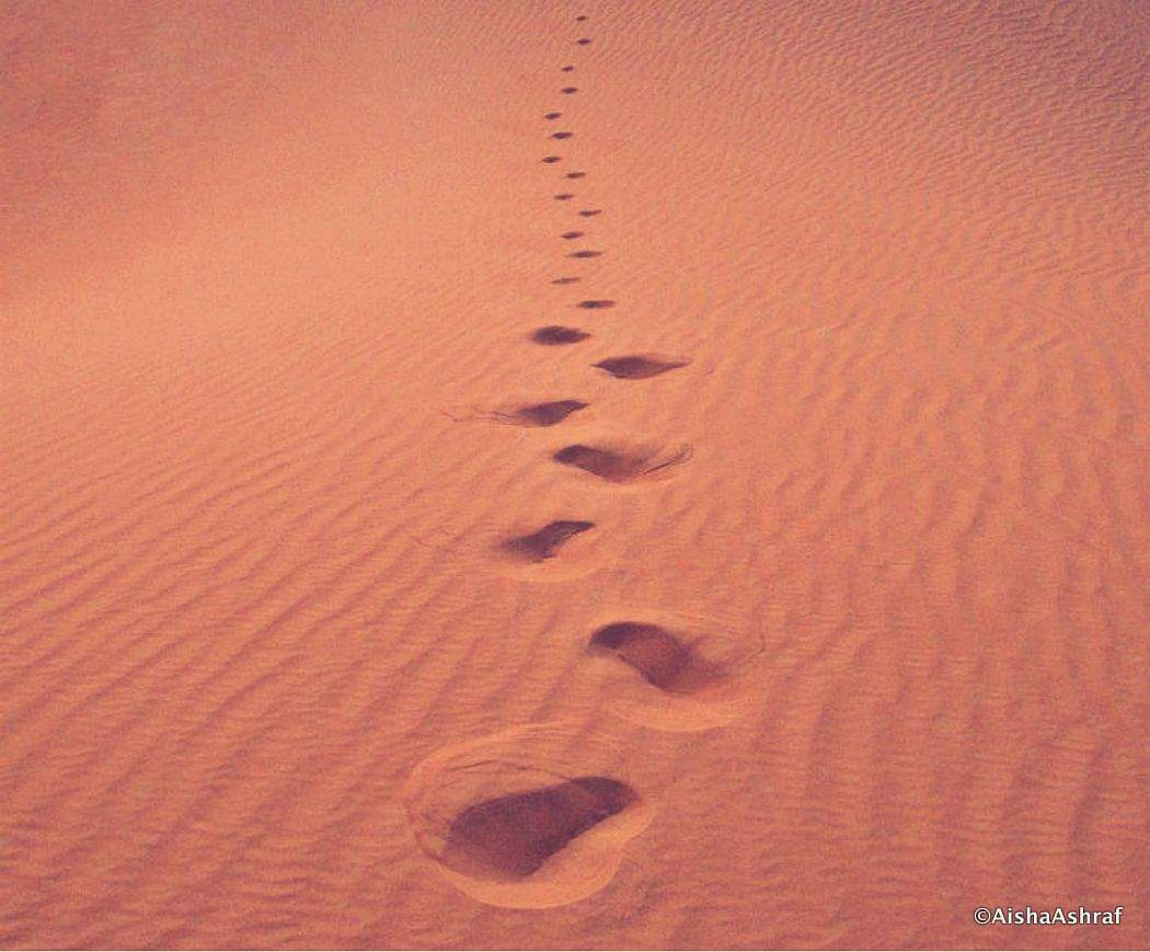 Footprints in the Saharan sand