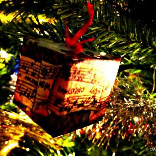 Merry Christmas from the Muzzies - Expatlog