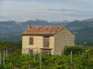 A scene near Mont Ventoux