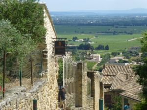 A view of Chateauneuf du Pape