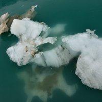 Glacier Gazing: Johns Hopkins