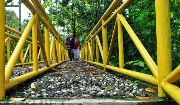 Berjalan di kebun durian