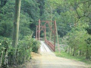 Puente Río Grande de Orosí (Tapantí)