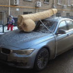 Criticize Putin, Get a 200 Lbs 'Cock' on Your Car – PIC