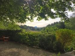 Au fond, la montagne Sainte Victoire
