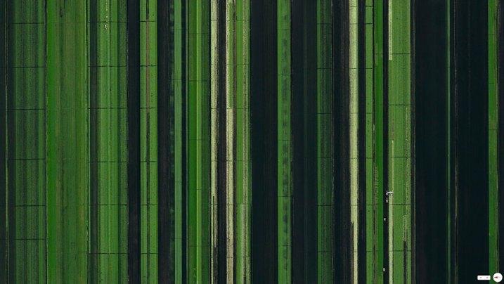 Landbruksområde i Loxahatchee, Florida, USA