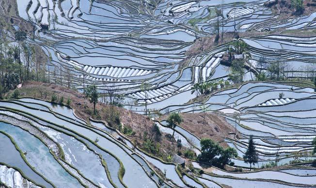 Yuanyang fylke i Kina