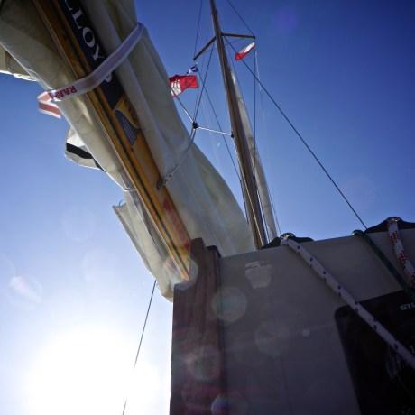 die erste gastlandflagge geht hoch; polen
