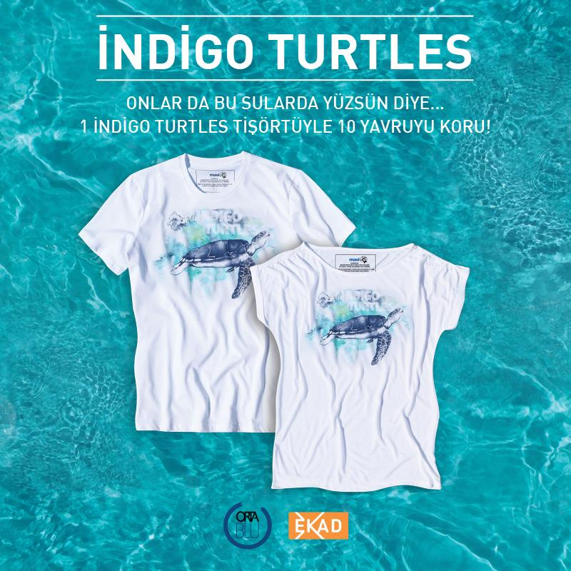 indigoo_mavi_turtles